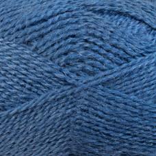 Krizantēma džinsu krāsa, 100g